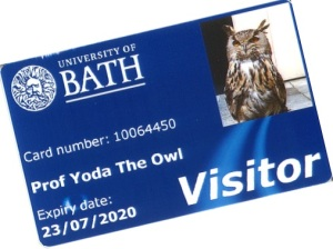 Yoda's new library card